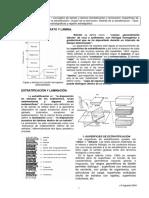 Estratoylamina.pdf