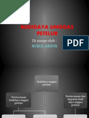 Budidaya Unggas Petelur Nurul Aripin Pptx