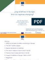 12 JSanMiguel EFFIS EuropeFire