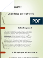 Undertake Project Work.ppt