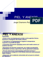 1-piel-y-anexosmedicina2001-1225677272452908-9.ppt