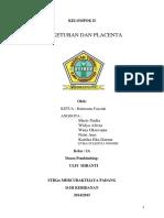 Air Ketuban Dan Placenta