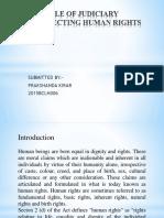 Role of Judiciary