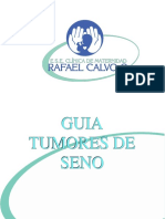 Guia de Tumores de Seno 2009