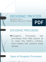 EXOGENIC PROCESSES.pptx