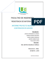 Informe Proyecto Muro de Contencion.docx