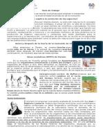 Guía de Trabajo Biologia