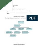 Guía Teórico-pràctica Compuestos Hidrogenados