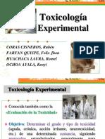 Toxicologia Experimental