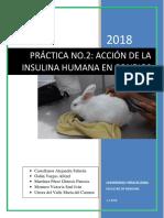 Efectos de La Insulina en Conejos