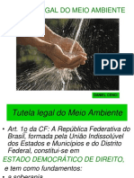 2 Tutela Legal Do Meio Ambiente