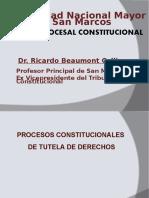 Procesal constitucional