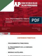 Procedimientos Tributarios, Medidas Cautelares, Proceso Contencioso Tributario