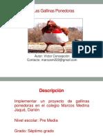 Proyecto Gallina Ponedora