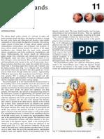 chap11.pdf