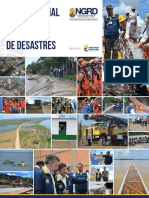 PNGRD-2015-2025-Version-Preliminar.pdf