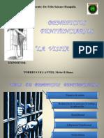 BENEFICIOS PENITENCIARIOS - VISITA ÍNTIMA.pptx