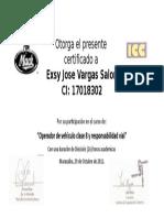 Certificado d Exsy