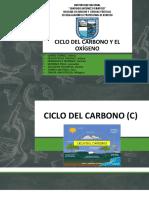 Ciclo Del Carbono y El Oxígeno