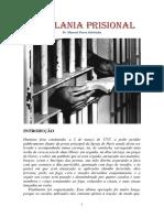 _ capelania prisional.pdf