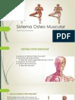 Sistema Osteomuscular 1