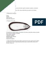 Prueba II Biología Vegetal