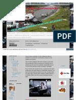 accidentesdetraficoyconsecuencias_blogspot_com_2011_11_parap.pdf