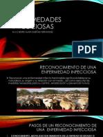 2016 Enefermedades Infecciosas -Reconocimiento (1)