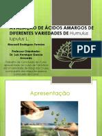 Avaliação de ácidos amargos de diferentes variedades de Humulus lupulus L.