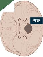 foramenes.pdf