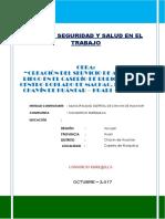 12.- Plan de Seguridad Ruriquilca 2017