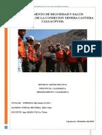 Reglamento Seguridad-salud Ocupacional