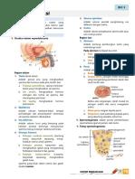 repro_bio3_3 (1).pdf