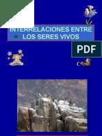INTERACCIONES ENTRE LOS SERES VIVOS.ppt.pps