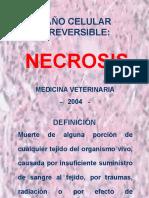 4 Necrosis