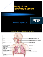 4b-System Respiratorius 2014.ppt