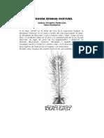 Ritual Individual de La Cuenta Del Haómer 2009