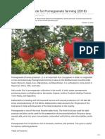 Agricultureguruji.com-The Ultimate Guide for Pomegranate Farming 2018