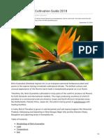 Agricultureguruji.com-Bird of Paradise Cultivation Guide 2018