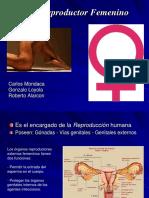 Aparato Reproductor Femenino 2[2]