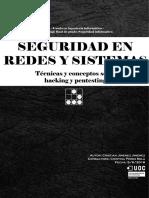 seguridad en redes y sistemas.pdf