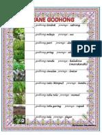 godhong lombok