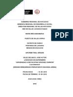 Informe Final SERUMS 2015 FINAL - Para Combinar