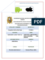 informeprevio3