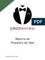 Juego Natural Reporte de Proposito de Vida