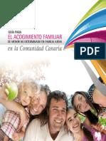 tema 6 guia_acogim_familiar.pdf