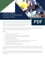 RINA Datasheet - Asset Integrity (Leatherhead) Condition Assessment