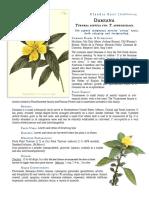 Damiana-Turnera-Diffusa-Keel.pdf