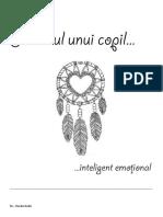 Fișe-IE (1)