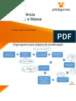 10 - Organograma Para Sistemas de Condensação